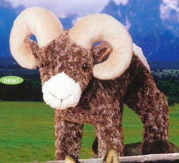 Stuffed Big Horn Sheep