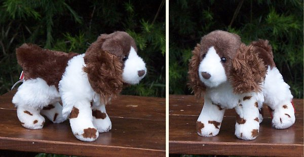 Stuffed Springer Spaniel