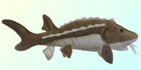 Cabin Critters Stuffed Plush Sturgeon