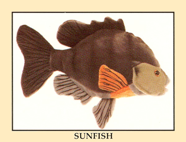 Stuffed-Sunfish