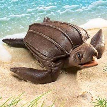 Stuffed-Sea-Turtle