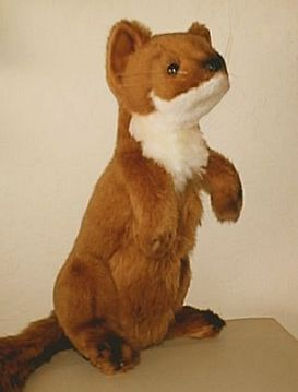 Stuffed Weasel