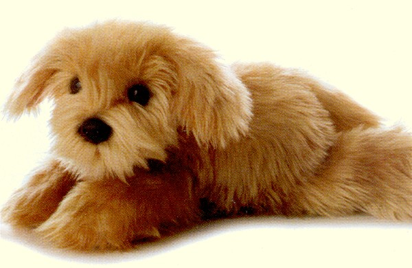 Aurora Lifelike Stuffed Plush Yorkipoo